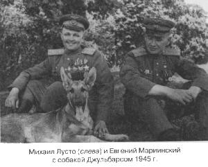 """Немецкая овчарка Джульбарс - единственная собака, награжденная медалью """"За боевые заслуги"""""""